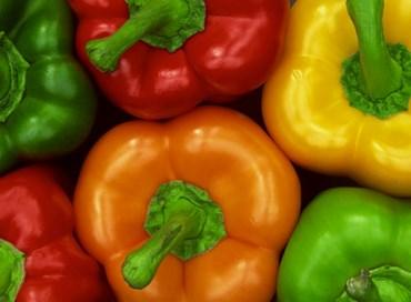 Peperoni gialli e verdi fritti